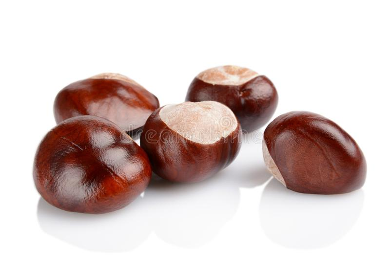 Closeup shot few chestnuts isolated on white background. Studio shot of few chestnuts with shell isolated on white background royalty free stock photography