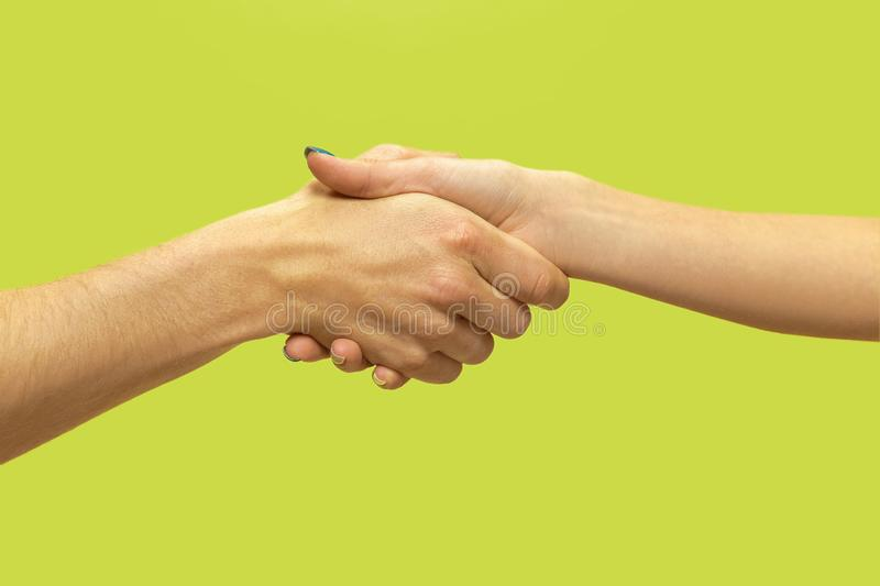 Closeup shot of human holding hands isolated on green studio background. Concept of human relations, friendship, partnership, family. Copyspace royalty free stock images