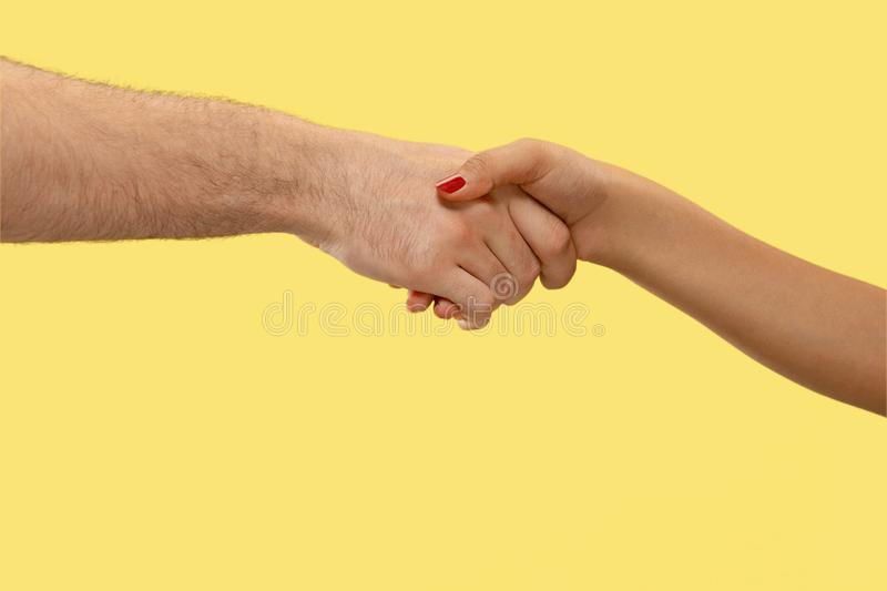 Closeup shot of human holding hands isolated on yellow studio background. Concept of human relations, friendship, partnership, family. Copyspace royalty free stock photo