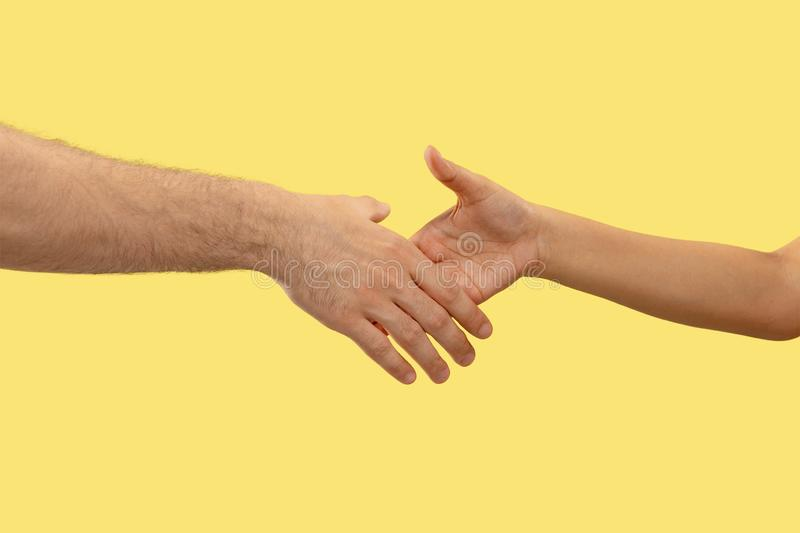 Closeup shot of human holding hands isolated on yellow studio background. Concept of human relations, friendship, partnership, family. Copyspace stock photo
