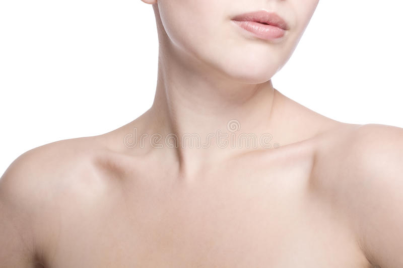 Closeup shot of neck and shoulder. Of a beautiful girl royalty free stock images