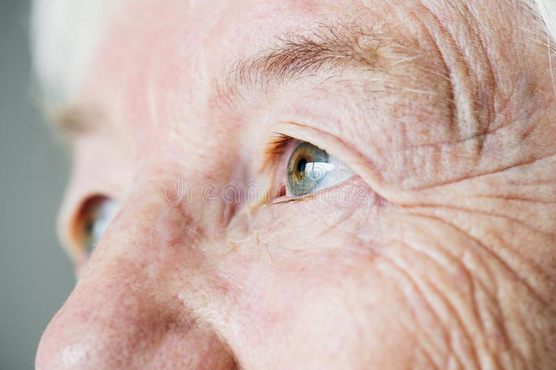 Closeup side portrait of white elderly woman`s eyes royalty free stock image