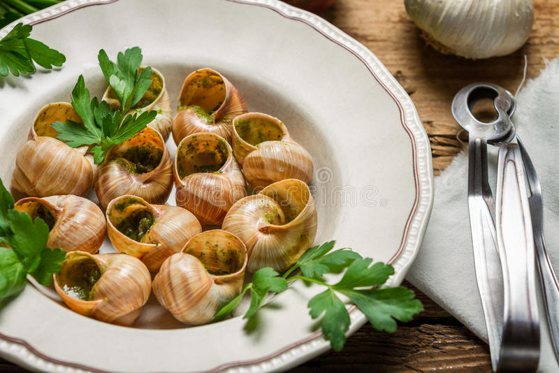 Closeup of snails baked in garlic butter and served with parsley royalty free stock images