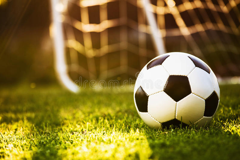 Closeup soccer ball on green grass stock image