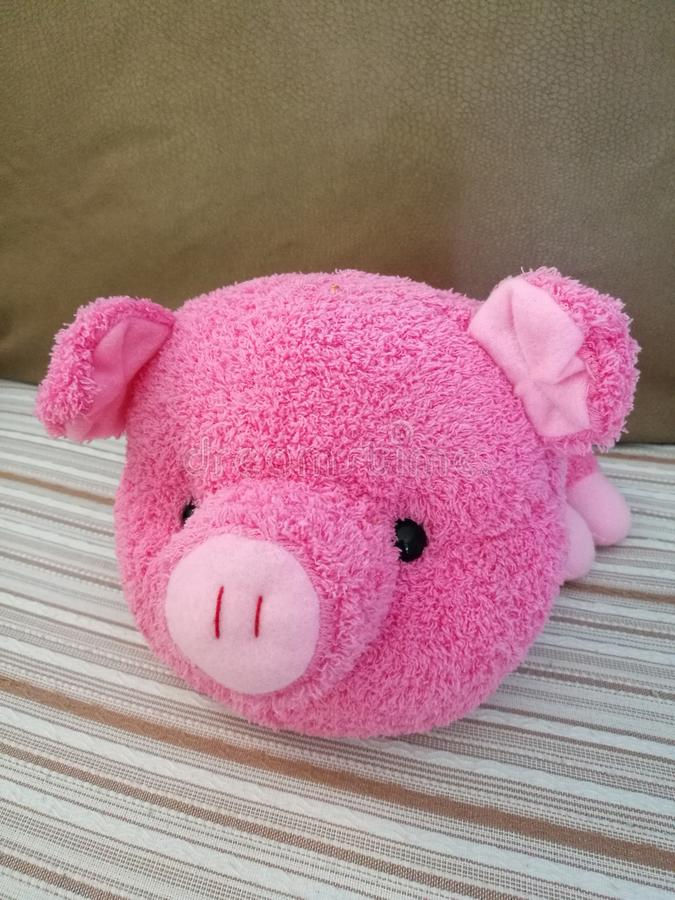 Pink pig toy royalty free stock image