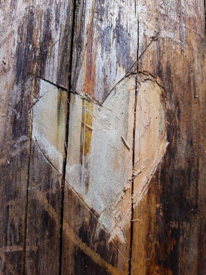 Closeup som snidas in i en textur för trädstam i formen av en hjärta royaltyfria foton