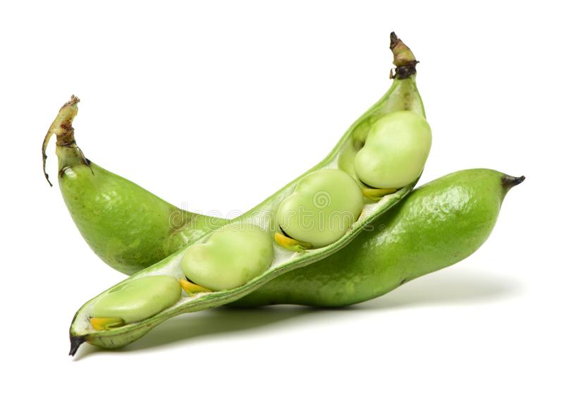 Closeup of some broad bean pods with the beans inside royalty free stock images
