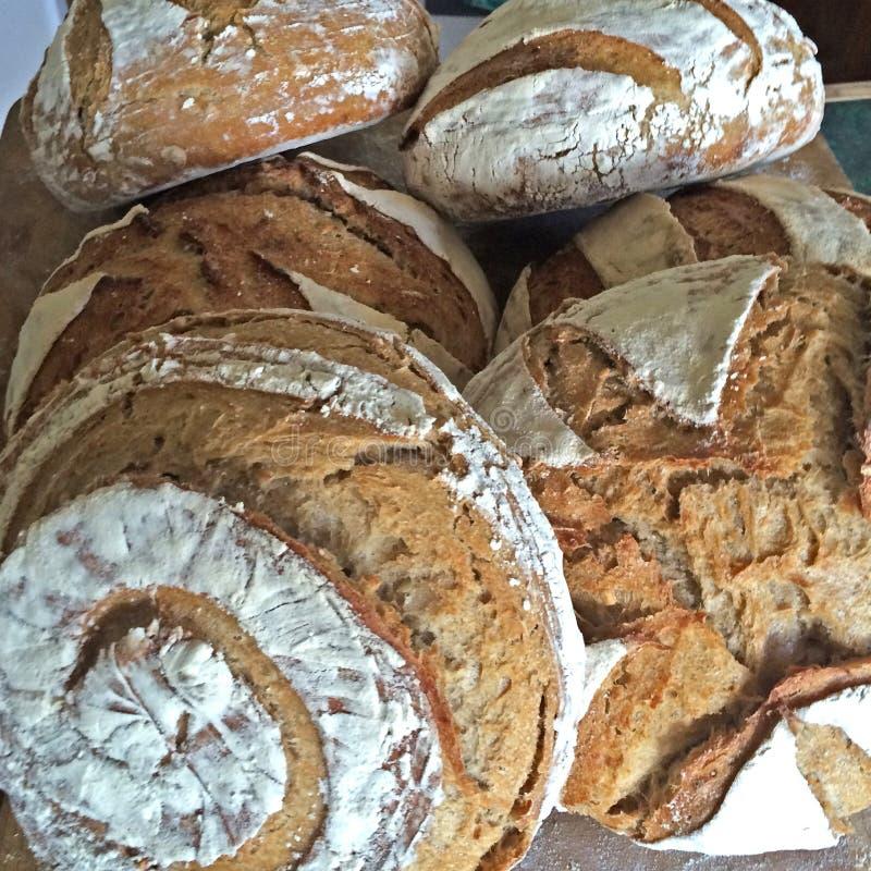 Closeup of Sourdough Bread Loaves royalty free stock photo