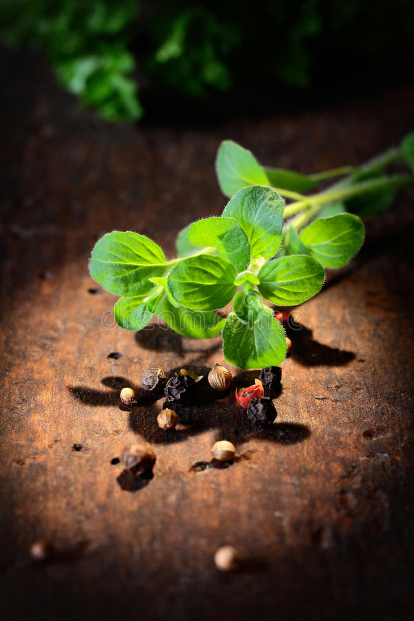 Fresh thyme with peppercorns stock images