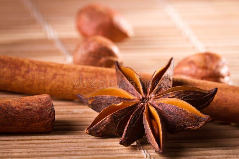 Closeup star anise and cinnamon bark stock image