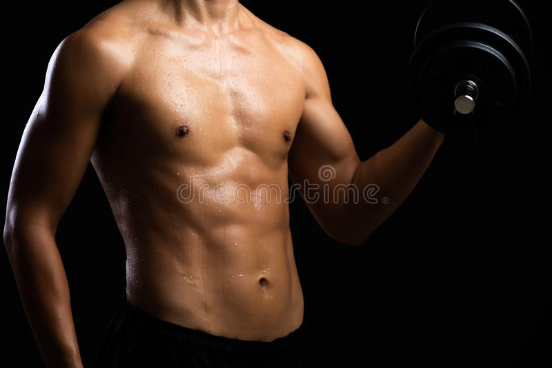 Closeup of a strength fitness body with dumbbell. Fit young man with beautiful torso. Beginner Bodybuilder and muscular body stock photos