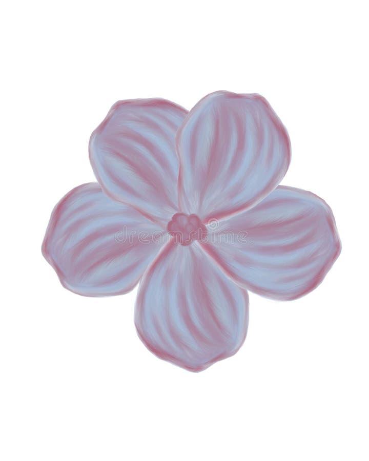 closeup tecknad blommahandviolet royaltyfri fotografi