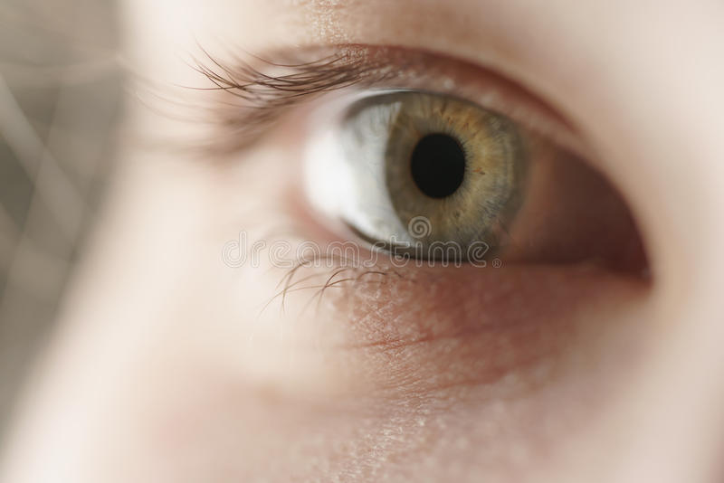 Closeup of teenage girl green eye looking straight stock photo