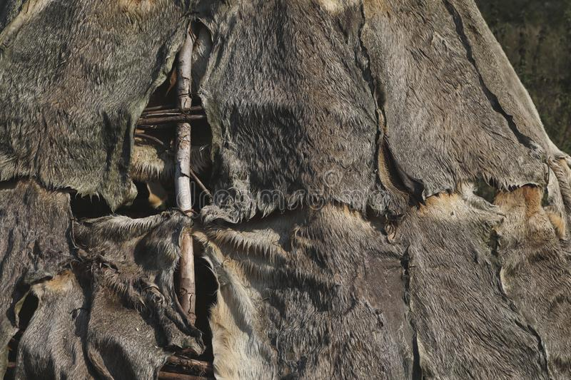 Tent made of animal hides and branches. A closeup of a tent made out of animal hides and branches stock photography