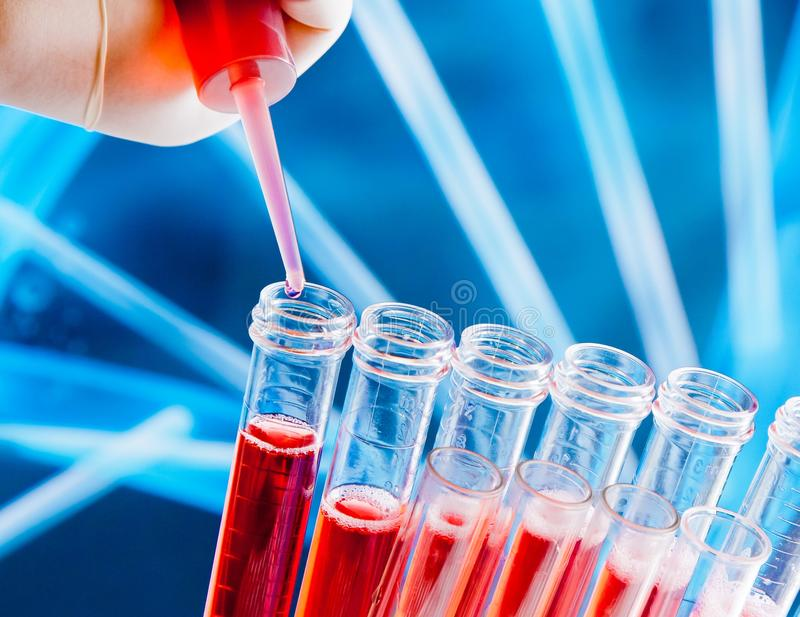 Closeup of test tubes with pipette on red liquid stock photos