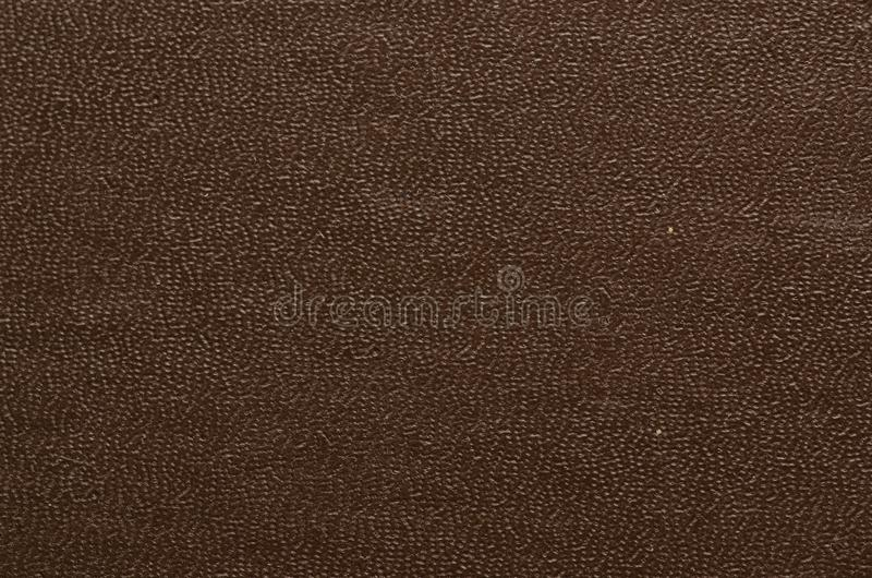 Closeup texture of skin. royalty free stock photos