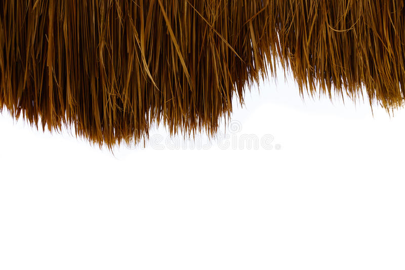 Closeup of thatch roof isolated on white background - palm roof. stock image
