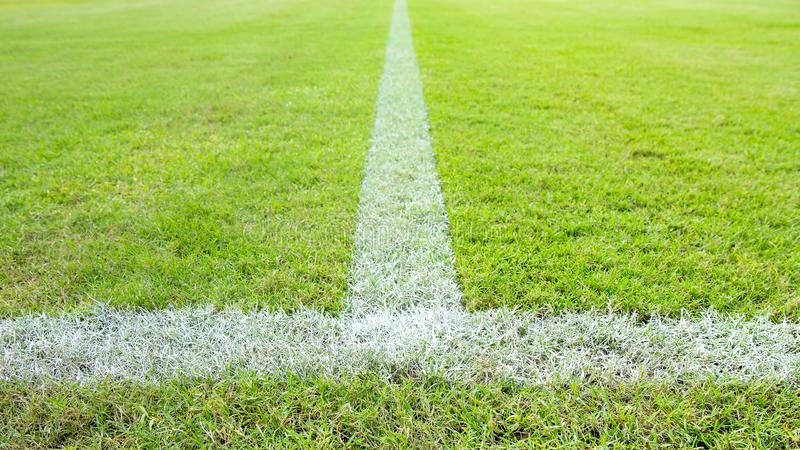 Closeup to white line in middle or center of football or soccer field. Grass at stadium royalty free stock photos
