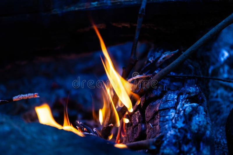 Tree branches burning in  camping bonfire. Closeup of tree branches burning in  camping bonfire stock photos
