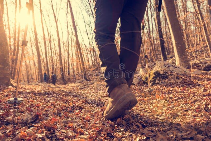 Closeup of trekking shoes. stock photo