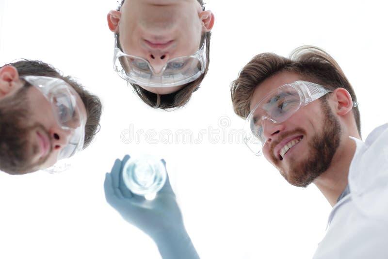 closeup um grupo de cientistas olha o líquido na taça fotografia de stock