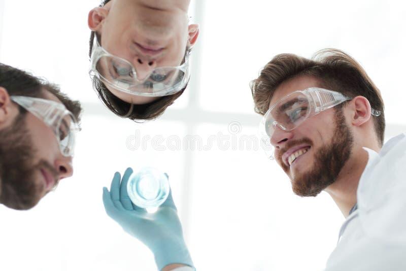 closeup um grupo de cientistas olha o líquido na taça imagem de stock