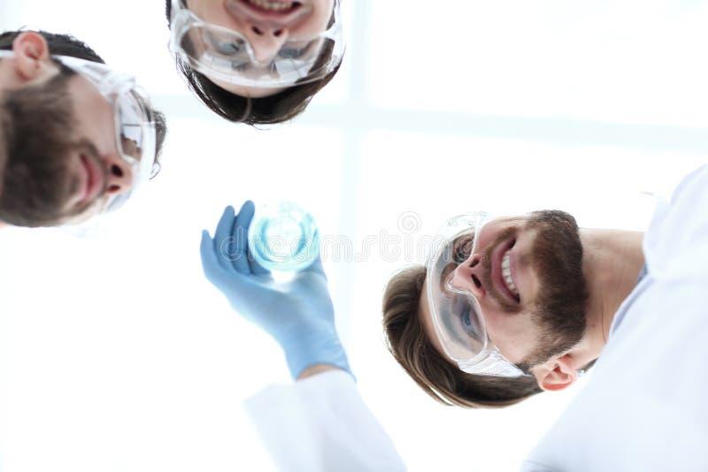 closeup um grupo de cientistas olha o líquido na taça imagens de stock