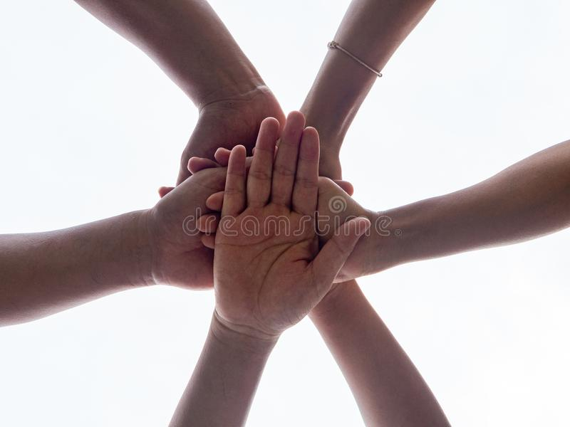 Closeup United hands on white background. United, Friendship, Te stock images