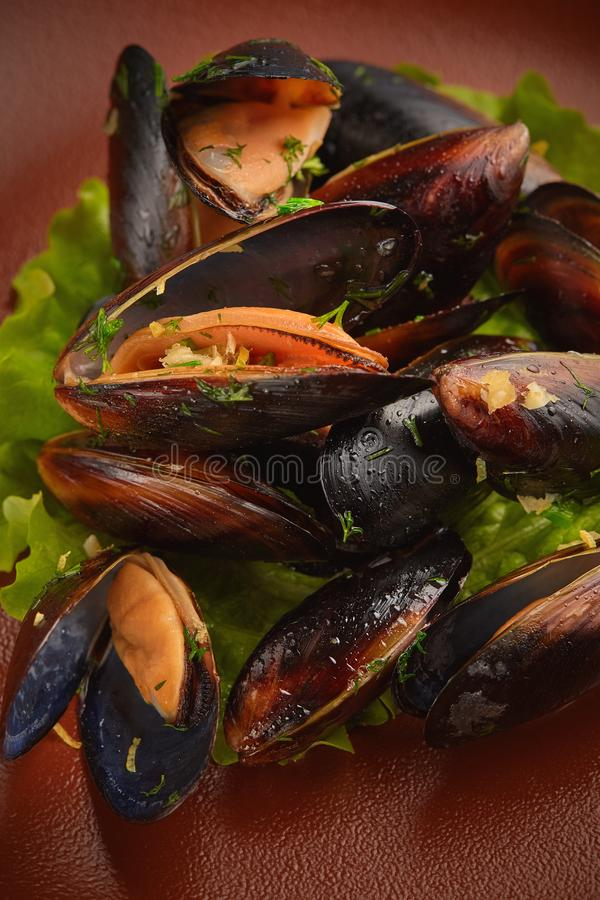 Closeup up roasted clam. Served with salad royalty free stock image