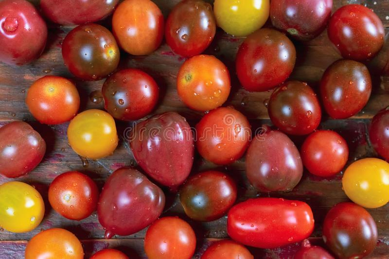 Closeup of variety of cherry tomatoes on rustic wood background royalty free stock image