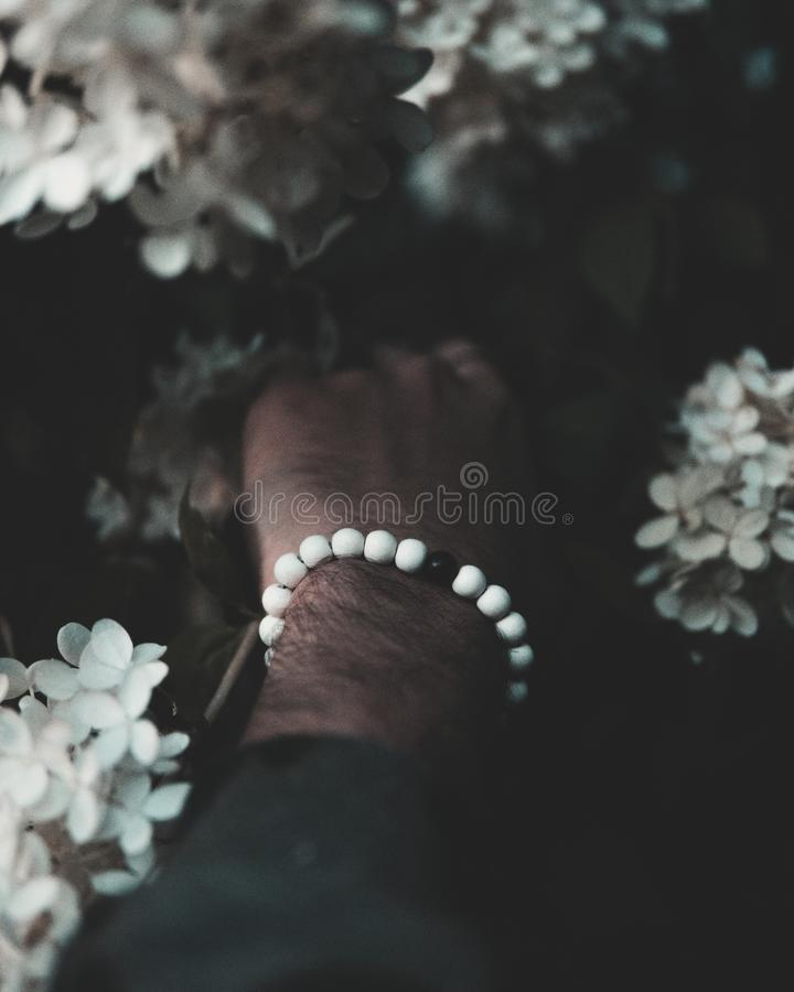 Closeup vertical shot of a male`s hand with white and black beads touching beautiful flowers. A closeup vertical shot of a male`s hand with white and black beads stock photography