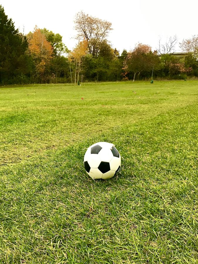 closeup view of a damaged soccer ball standing on a green grass football field stock image