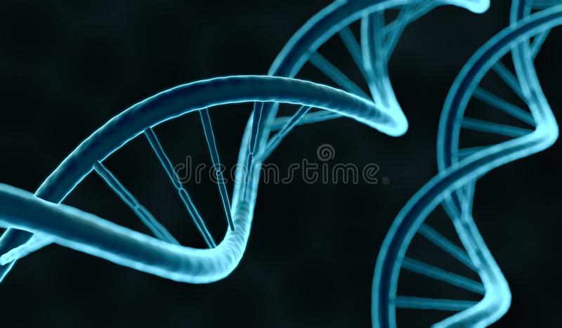 Closeup view on DNA molecule. 3D rendered illustration.  stock illustration