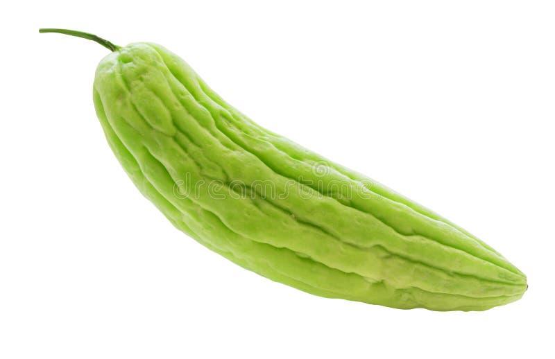 Closeup View Green frischen bitter Gourd isoliert auf dem Hintergrund mit Clipping-Pfad lizenzfreies stockbild