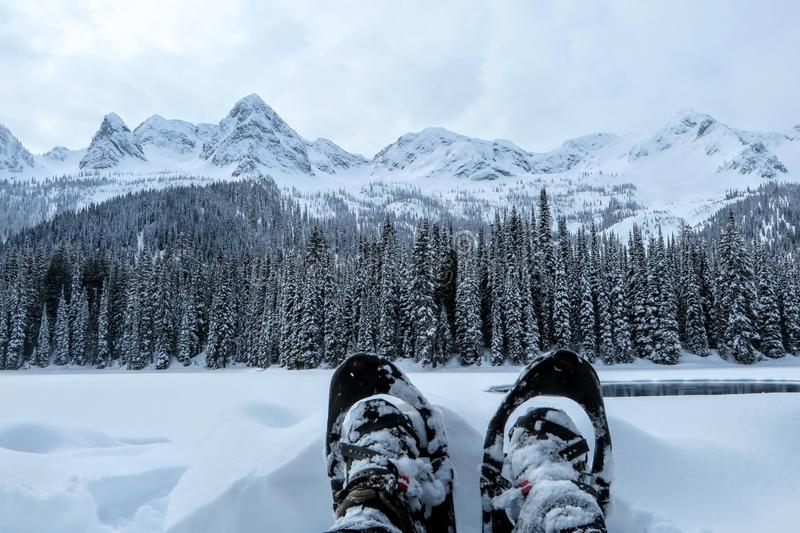 A closeup view of a person and their pair of snowshoes in Fernie, British Columbia, Canada. The majestic winter background is an absolutely beautiful place to royalty free stock photos