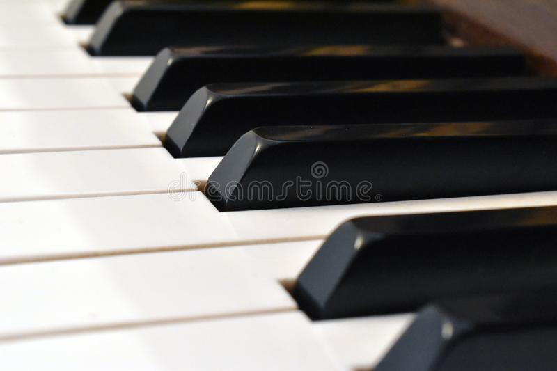 Piano keyboard. Details of piano keyboard stock image