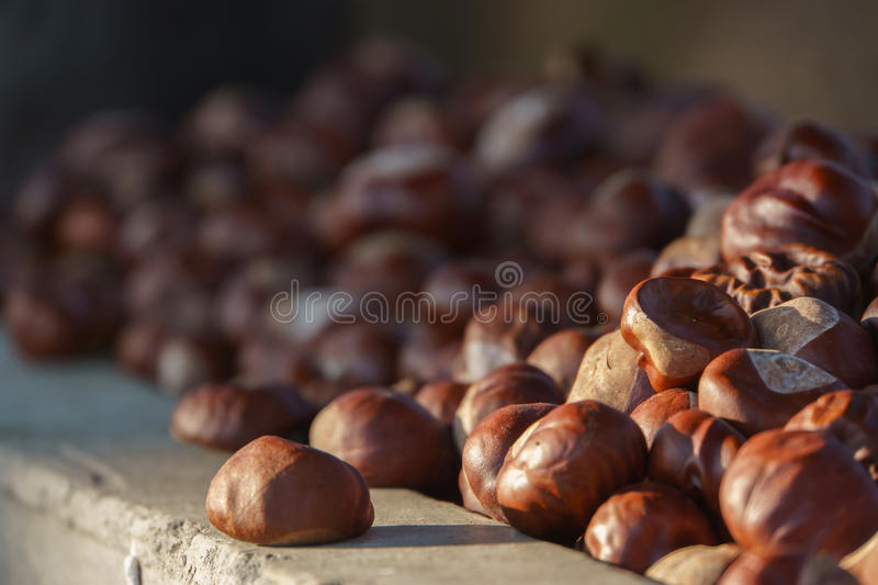 Closeup view of the pile of chestnuts. stock image