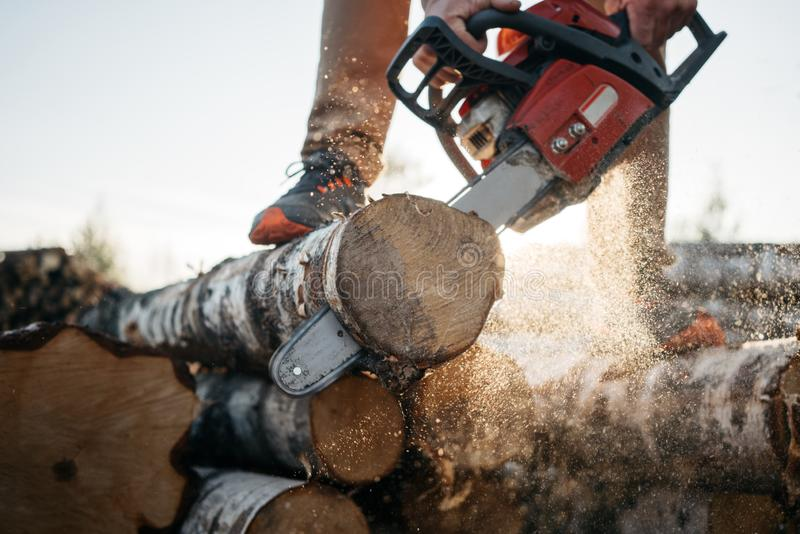 Closeup view on strong hand lumberjack and chainsaw stock photo