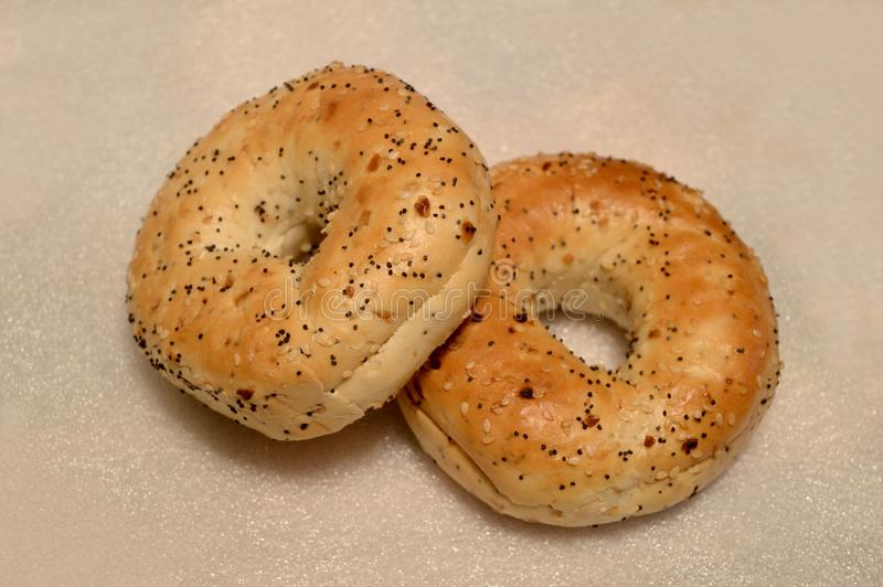 Fresh Everything Bagels stock images