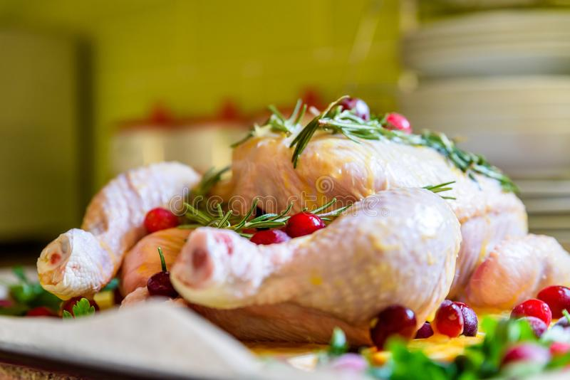 Closeup view of Whole Raw Chicken with Fresh parsley Cranberries and Orange Slices on baking tray tin prepared for roasting in ove. N stock photo