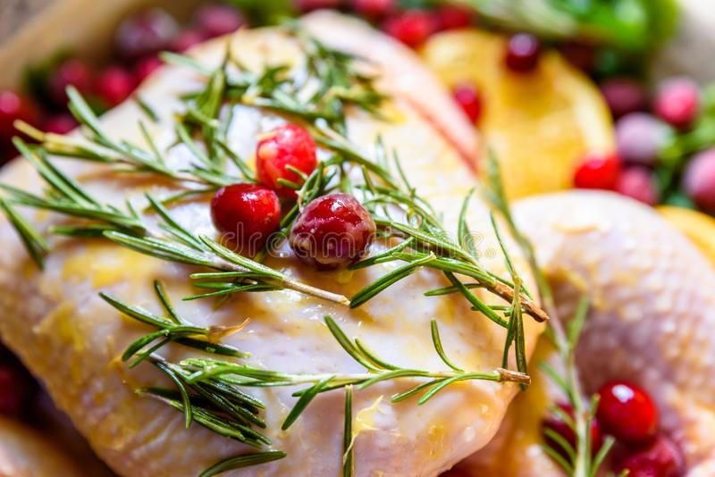 Closeup view of Whole Raw Chicken with Fresh parsley Cranberries and Orange Slices on baking tray tin prepared for roasting in ove. N royalty free stock photos