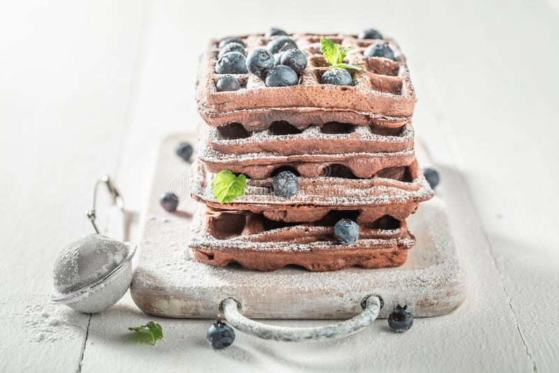 Closeup of waffles with chocolate and berry fruits royalty free stock photos