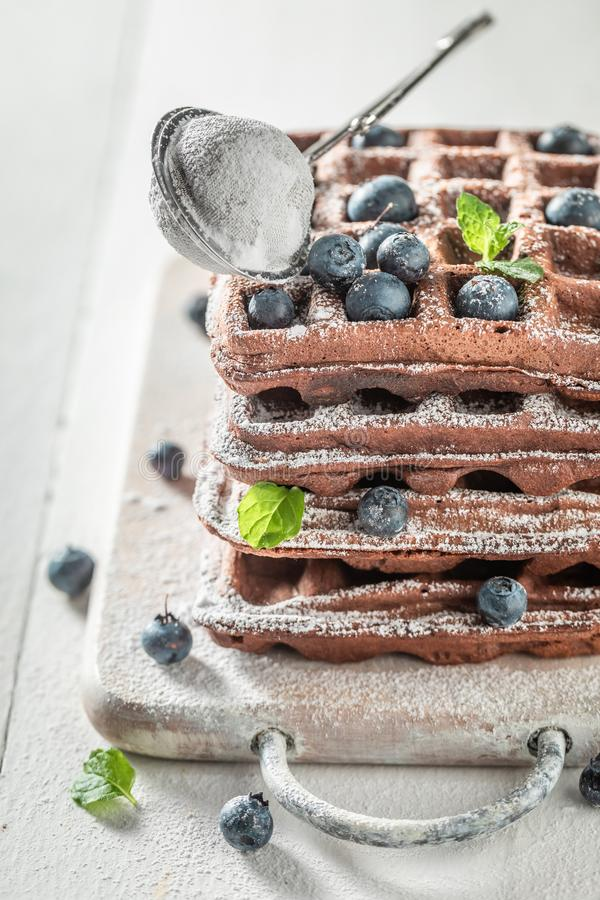 Closeup of waffles made of cocoa with berry fruits stock images