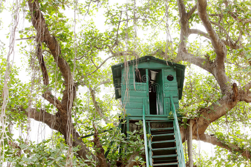 Closeup of a Watch tower at Jhirna Forest, Jim Corbett. Watch tower is used to provide safe and high place to observe the surroundings stock photography