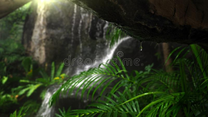 Closeup of water drops underneath the cave with blur background of rainforest waterfall. Selected focus.  royalty free stock photography