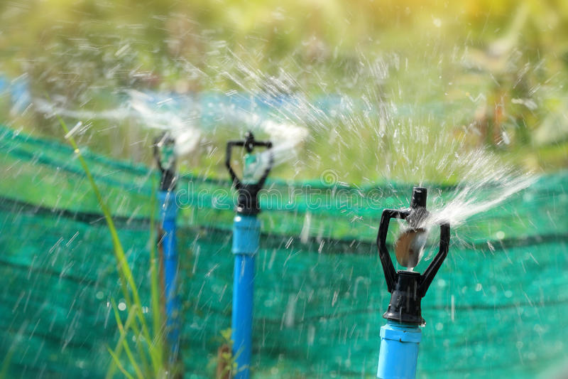 Closeup of water sprinkler, irrigation of agricultural field stock photography