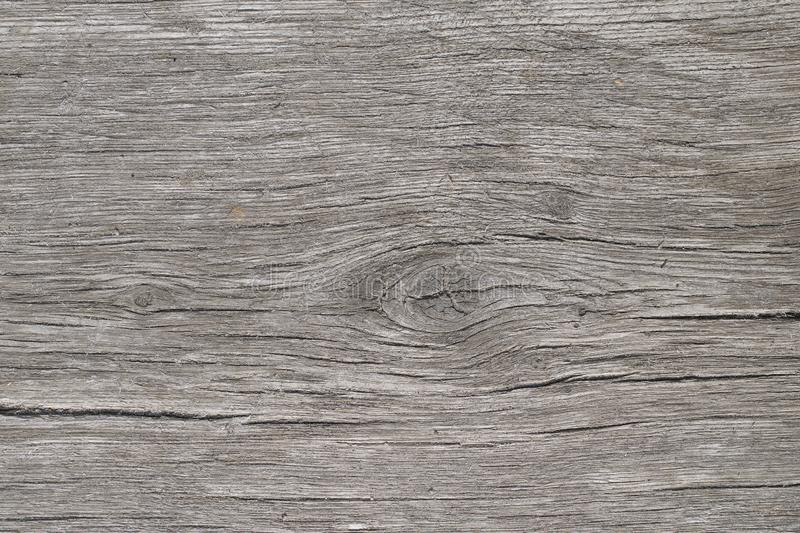 Closeup of weathered gray board. Wooden background stock photo