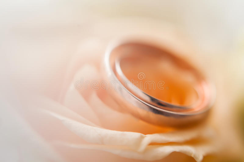 Closeup of wedding rings royalty free stock images