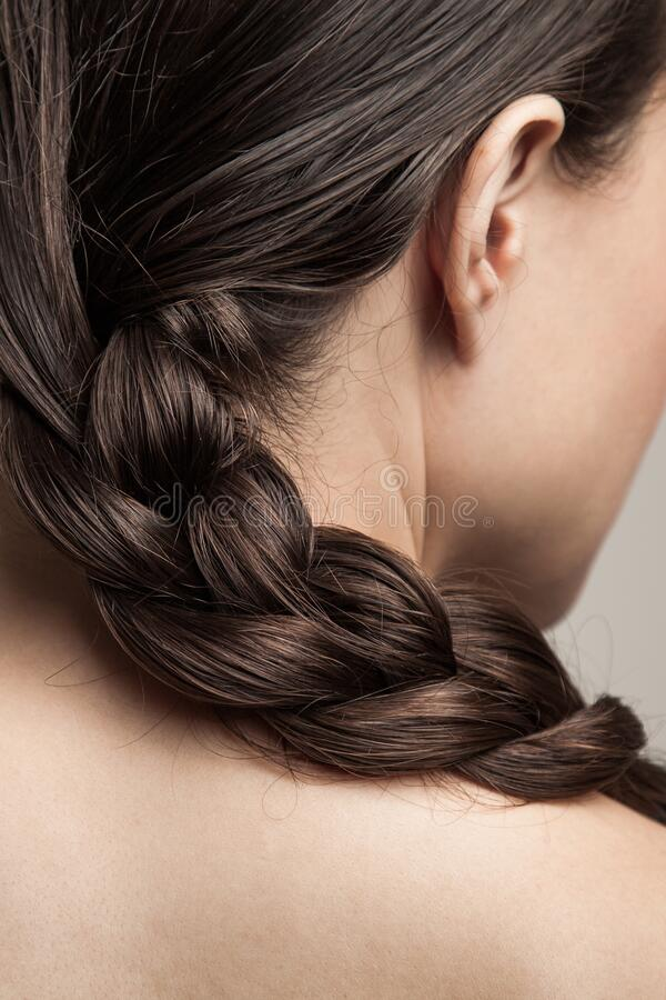 Closeup of wet woman hair in braid studio shot rear view focus on hair stock photo