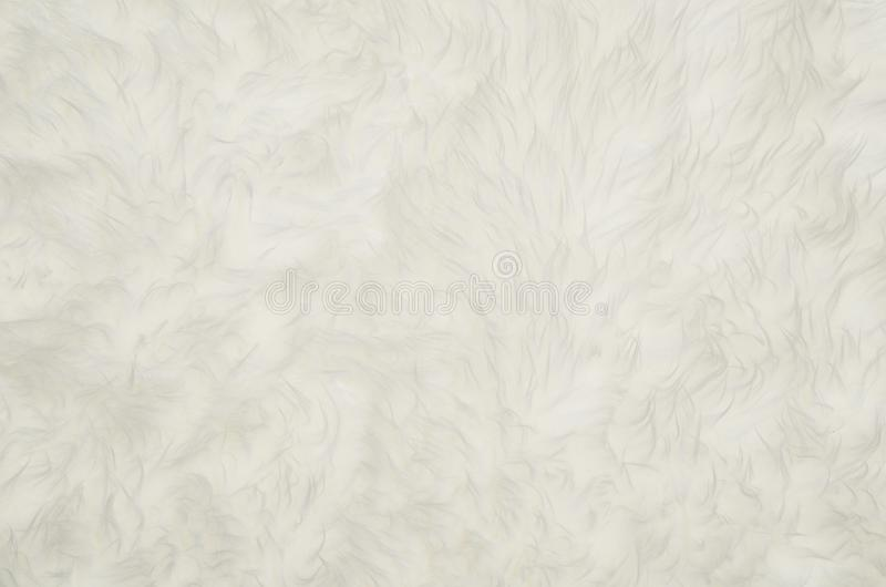 Closeup of white fluffy fur texture or pattern background. Closeup of white fluffy fur texture or pattern. Background with copy space for text or other design stock photos
